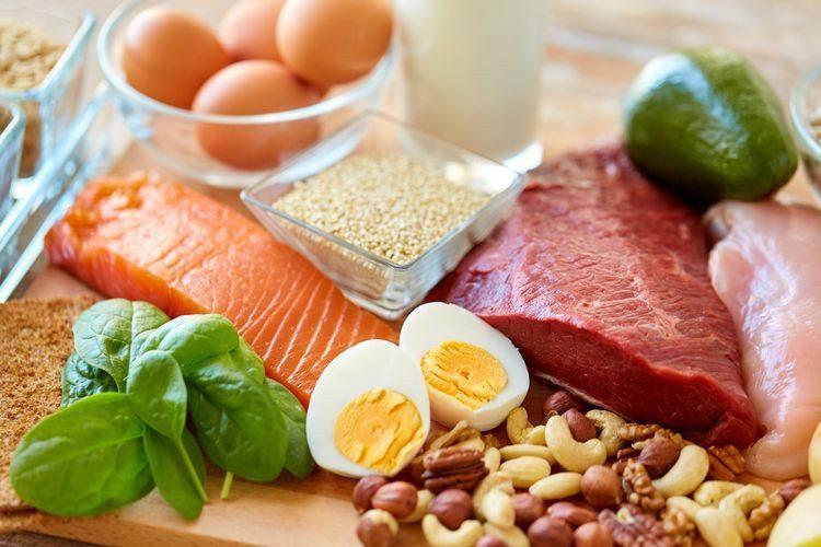 Daging, Ayam, Telur, Mana Proten Hewani Terbaik Bagi Tubuh Manusia?
